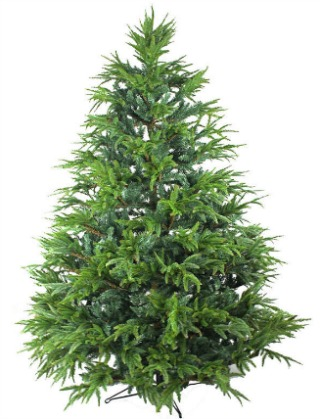best water for christmas tree