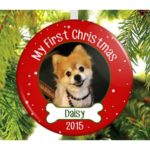 Puppy's First Christmas Ornament Ideas 2017